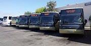 El Consorcio de Transporte del Campo de Gibraltar crece un 1% y cierra 2017 con 1,21 millones de viajeros